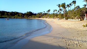 Caneel Bay Beach