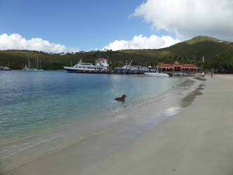 Cruz bay Beach